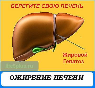 Баня при заболевании печени