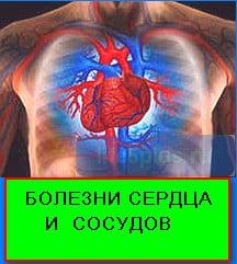 bolezni serdca 1