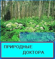 priroda 4
