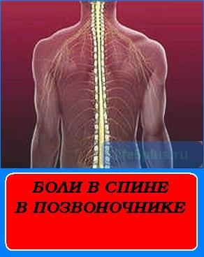 """alt=""""боли в спине в позвоночнике"""""""