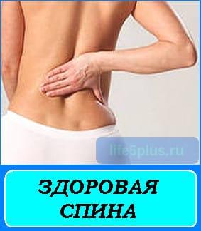 """alt=""""здоровая спина"""""""
