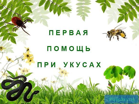 """alt=""""Укусы насекомых и змей"""""""