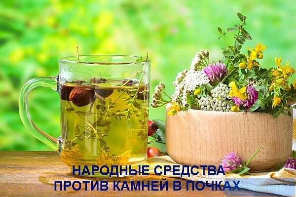 Народное лечение камней в почках: питание, рецепты |