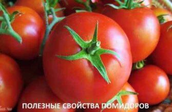 """alt=""""Чем полезны помидоры"""""""